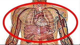 【衝撃】禁煙した瞬間から体に起きる驚くべき10の変化