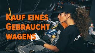 VW LT Tipps zur Wartung