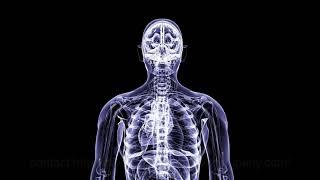 medical body roation xray 3d animation company human anatomy healthcare animation san antonio 3d vis