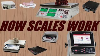 How Does a Digital Scale Work?
