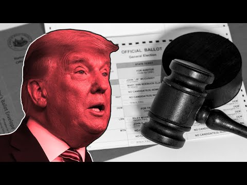 Election Legal Expert Breaks Down The Chances Trump's Lawsuits Actually Work