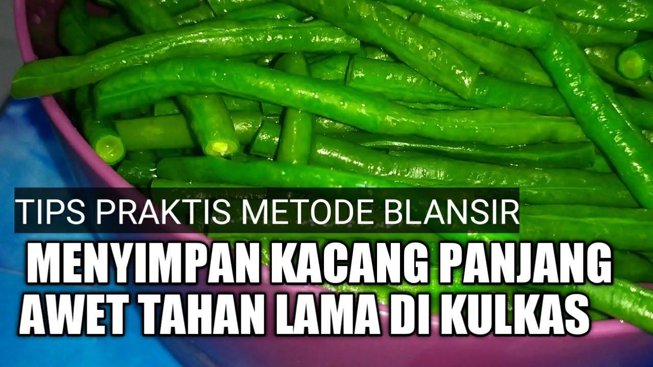 Tips Menyimpan Kacang Panjang Dalam Kulkas Agar Tahan Lama I Food Preparation I Metode Blansir I Youtube