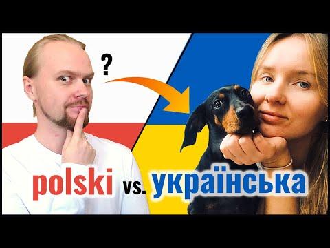 Polish Ukrainian Mutually Intelligible? | Animals | Slavic Languages Comparison