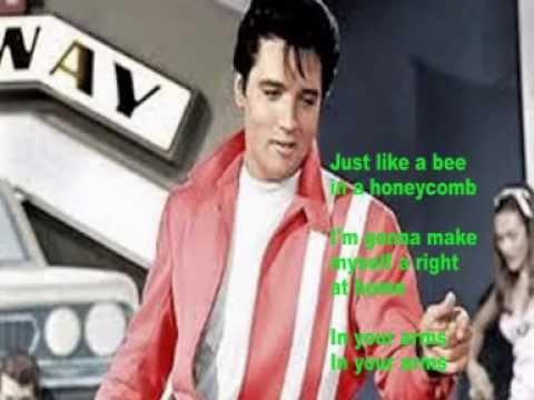 Elvis Presley Karaoke In Your Arms - YouTube
