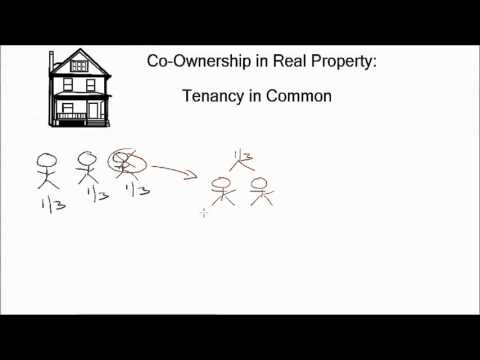 Real Estate Exam Prep in 5 Minutes (Tenancy in Common)