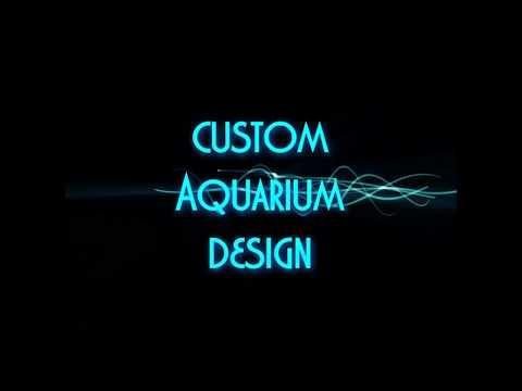 Aqua Creations - Custom Aquarium Design