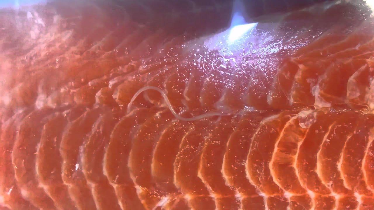 Live worms in Costco salmon