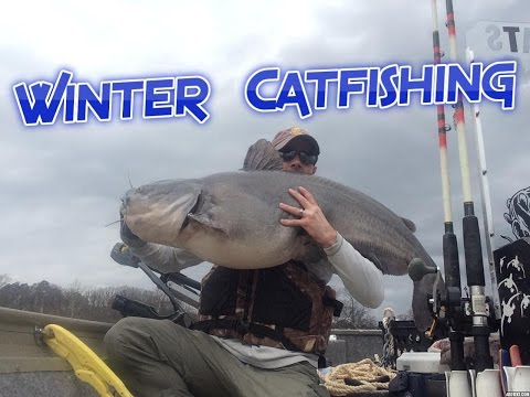 How to Catch Wintertime Catfish