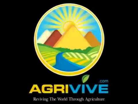 Buy USA Bulk Wholesale Grains Trade, Grains Trade, Grains Trade, Grains Trade, Grains Trade