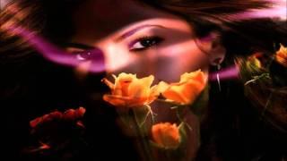 Farewell Trance -Kabhi Alvida Naa Kehna