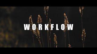 Magic Lantern Raw Video Worflow (10/12bit - Canon 700D)