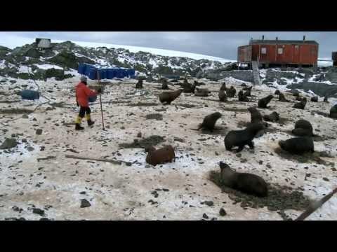 Antarctica,19 Living in Antarctica Kirk Watson First winter trip part 3