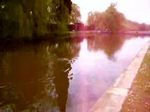 The Pond at Coombe Abbey Travel Video