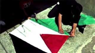 Anerkend Palæstina NU