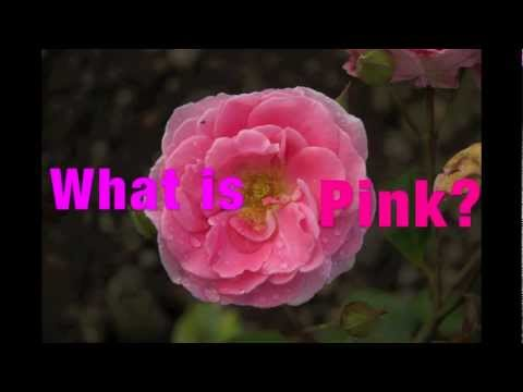 What Is Pink? written by Christina Rossetti