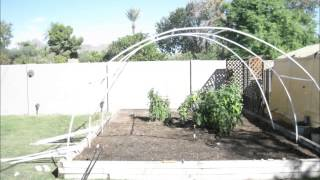 DIY Greenhouse with PVC Pipe TIME LAPSE video 1 of 2