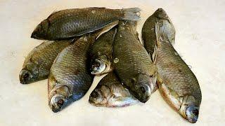 Как легко, просто и быстро засолить рыбу. Вяленая рыба.