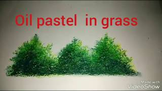How to draw a grass in oil pastel  by parul Aggarwal