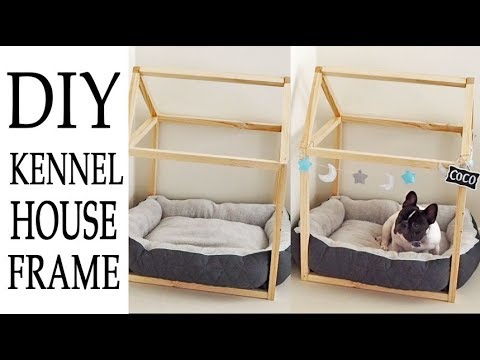 Diy Dog Bed Frame Fail Vlog