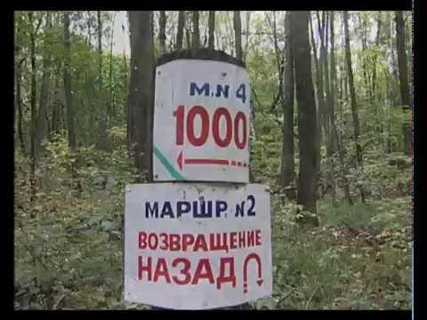 Санаторий им. М. Горького
