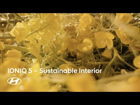 IONIQ : Sustainable Materials and Colors