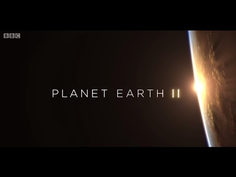 Planet Earth II Theme (BBC - Hans Zimmer)