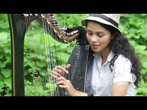 DESPACITO (Harp Cover) Meagan Pandian
