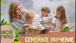 ВСЕ про СЕМЕЙНОЕ ОБУЧЕНИЕ  реальный опыт   проблемы современной системы образования школа СССР стали