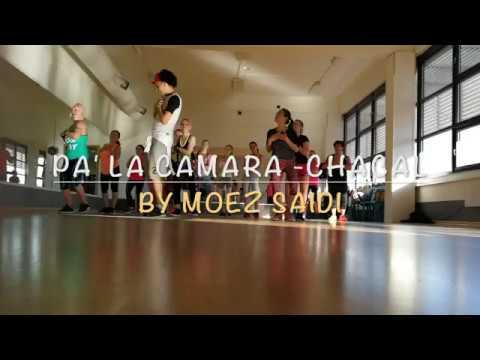 Pa' la Camara – Chacal | Zumba Fitness choreography by Moez Saidi