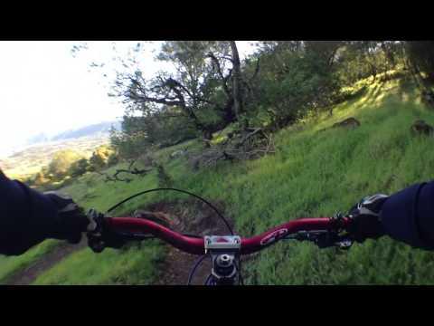 Skyline Wilderness in Napa, CA - Skyline Trail
