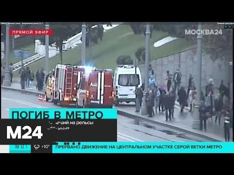 """Пассажир погиб после падения на рельсы на станции метро """"Боровицкая"""" - Москва 24"""