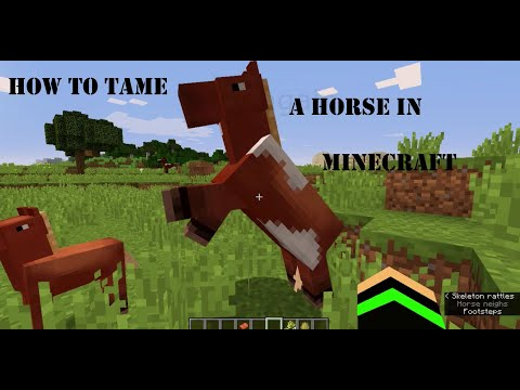 |-how-to-tame-a-horse-easily-in-minecraft-|-for-beginners-|