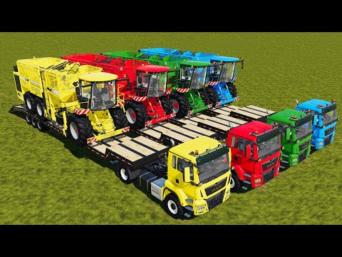 LAND OF COLORS ! SUGAR BEET HARVESTING & LOADING TRAILER WITH COLORED VEHICLES  Farming Simulator 19  