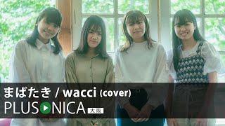 まばたき / wacci (cover)