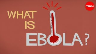 What We Know (and Don't Know) About Ebola - Alex Gendler