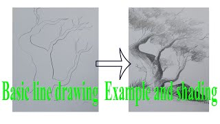 how to do basic line drawing and shading