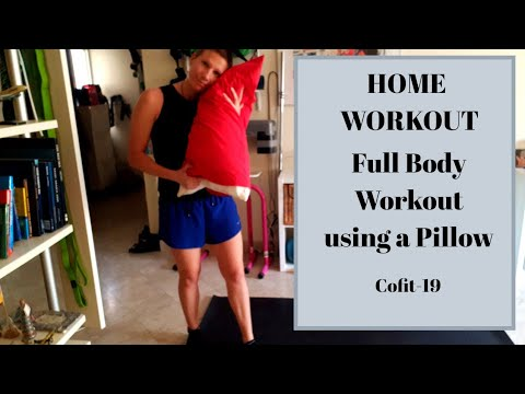home workout full body workout no noise no jumping just