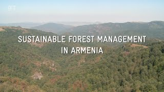 Sustainable Forest Management in Armenia / 2015