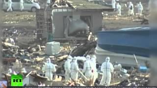 "Fukushima Gives Seals Leukemia, Mutates Trees & ""Rebuilding"" Update 8/28/15"