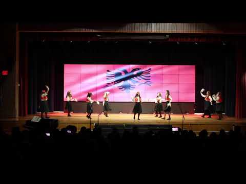 New Dorp High School: International Fair (Albanian)