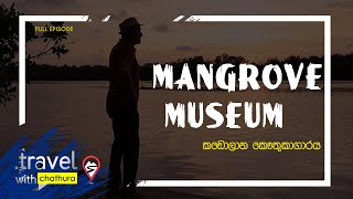 Travel with Chatura @ Mangrove Museum කඩොලාන කෞතුකාගාරය 27 10 2018