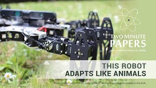 This Robot Adapts Like Animals | Two Minute Papers #246