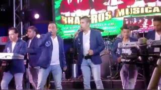 Video La abeja miope.Lo mejor de Brazeros Musical en vivo. Popurrí,El zancudo loco, Música duranguense mix download MP3, 3GP, MP4, WEBM, AVI, FLV Agustus 2018