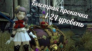 Гайд по быстрой прокачке 1-24 уровень Dragon Nest