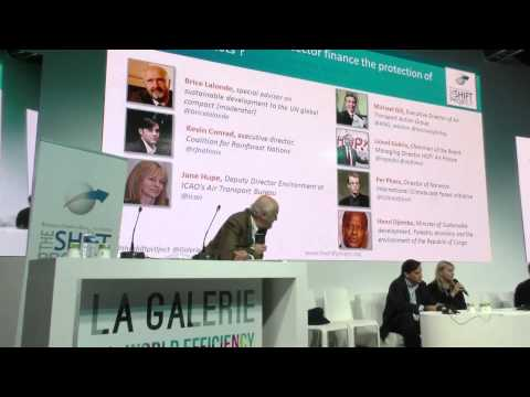 Protection of forests & aviation sector - plenary by The Shift Project - COP 21 -