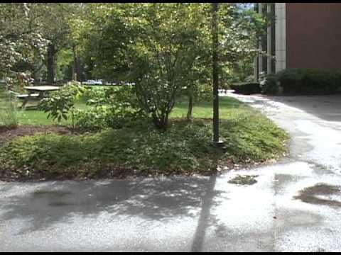 USM Portland Campus