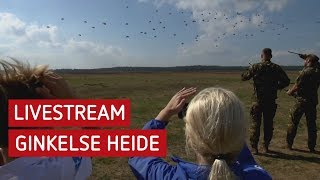 LIVE: Luchtlandingen Ginkelse Heide 2019