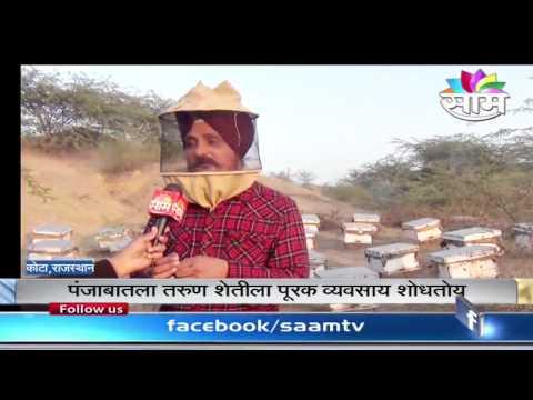 The Honey Bee Farming success story of three Punjabi friends