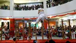 Video Lion Dance at Bangsar Village II on the 1st of March 2015 download MP3, 3GP, MP4, WEBM, AVI, FLV Agustus 2018