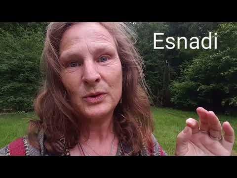 Nr 18~Uplifting music vibrations can heal you~Esnadi